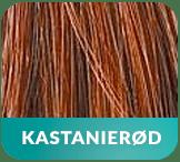 Hairboost - kastanieroed